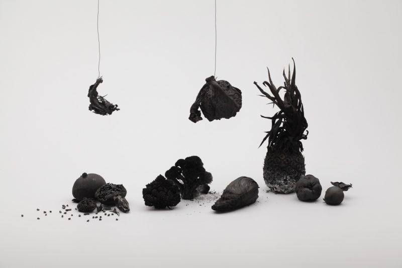 Kensuke Koike, Still life, 2012