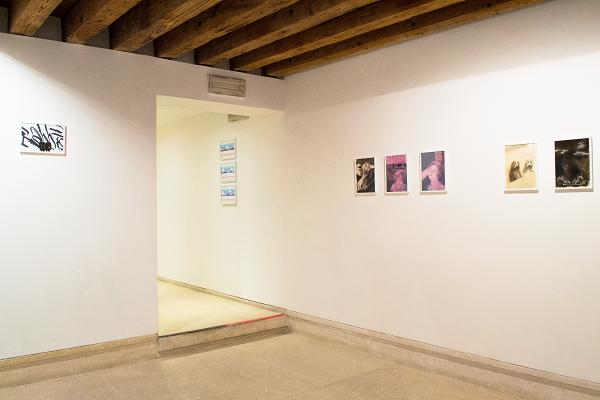 Il disegno politico italiano, Installation view A plus A, 2019