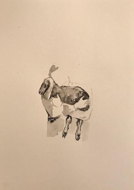 Ruth Beraha, Fiocco di Neve, 2018