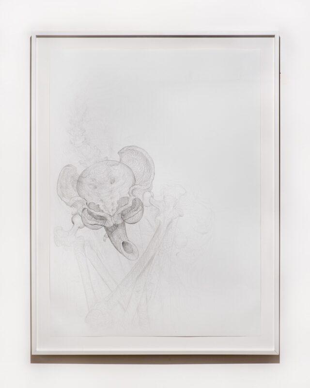 Beth Collar, Hip mobility drawing (pelvic antichrist), 2021